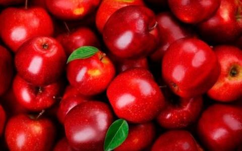 Những loại siêu thực phẩm nên ăn trong mùa thu